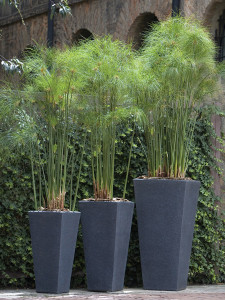 OUTDOOR RESIN CONTAINERS