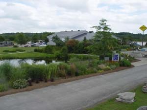 Solty Garden Centre